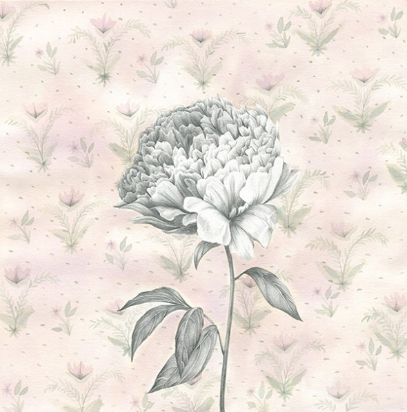 Peony-light-wallpaper1