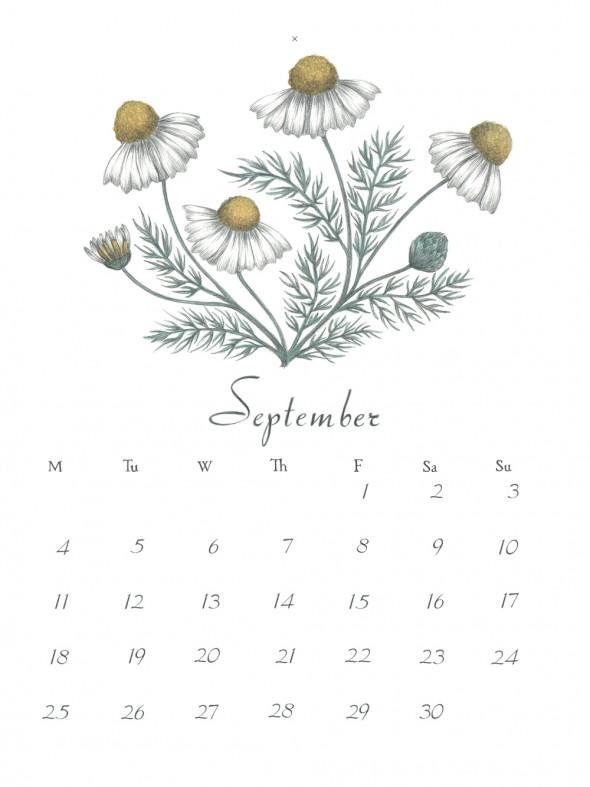 9-September2017stor